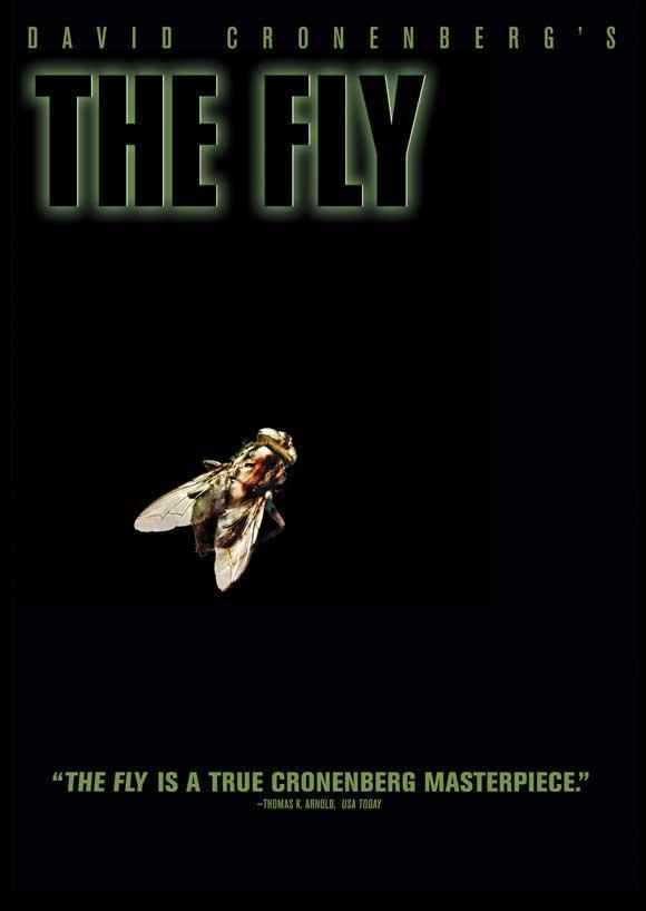 Fly Film